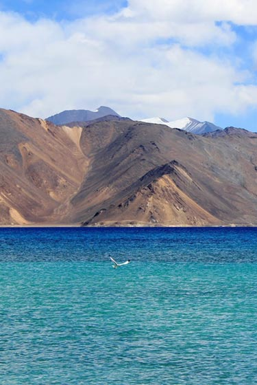 Lake & Passes of Ladakh