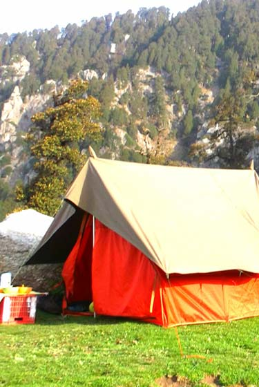 Triund Camp & Trek